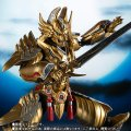 S.H.Figuarts Golden Knight Garo (Raikou Ver.) 『November release』